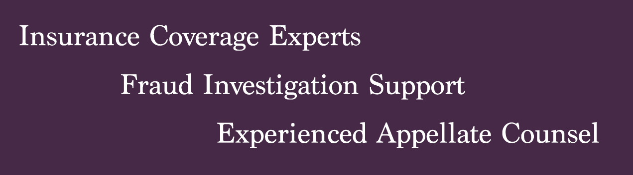 Practice areas:Insurance coverage expert, Fraud investigation support, Experienced appellate counsel.